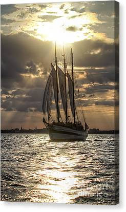 Schooner Pride Charleston Sc Canvas Print by Dustin K Ryan