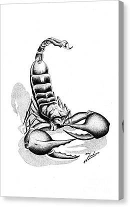 Scorpion Canvas Print by Joker Gallery