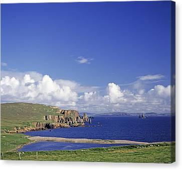 Scotland Shetland Islands Eshaness Cliffs Canvas Print by Anonymous