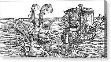 Sea Monsters Or Whales, 16th Century Canvas Print by Photo Researchers