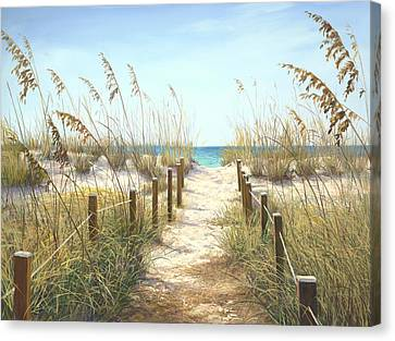 Sea Oat Path Canvas Print by Laurie Hein