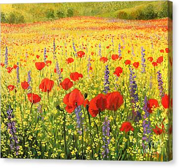 Sea Of Blossom Canvas Print by Kiril Stanchev