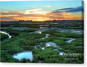 Sea Of Green Canvas Print by English Landscapes