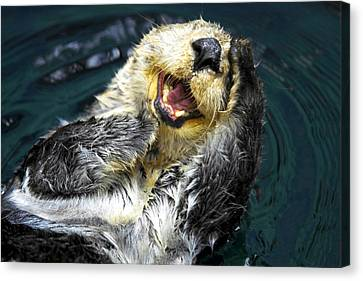 Sea Otter  Canvas Print by Fabrizio Troiani