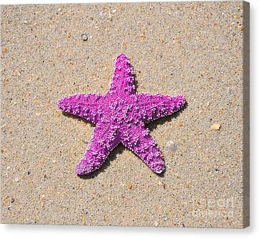 Sea Star - Pink Canvas Print by Al Powell Photography USA