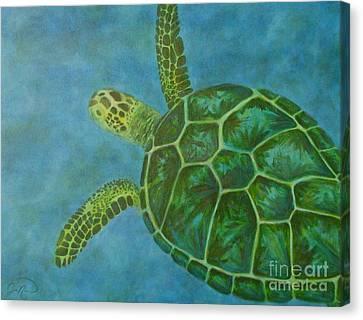 Sea Turtle Canvas Print by Julie Neuman
