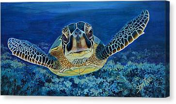 Sea Turtle Canvas Print by Shirl Theis