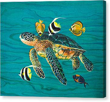 Sea Turtle With Fish Canvas Print by Emily Brantley