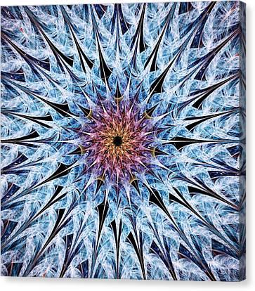 Sea Urchin Canvas Print by Anastasiya Malakhova