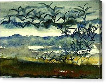 Seabirds Rising From The Marsh 2-27-15  Canvas Print by Julianne Felton