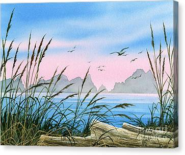 Seacoast Beauty Canvas Print by James Williamson