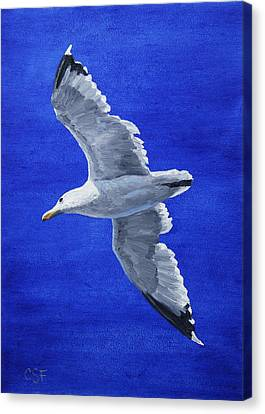 Seagull In Flight Canvas Print by Crista Forest