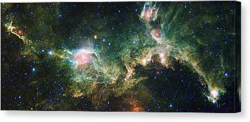 Seagull Nebula Canvas Print by Adam Romanowicz