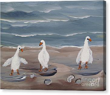 Seagulls At The Beach Canvas Print by Beverly Livingstone