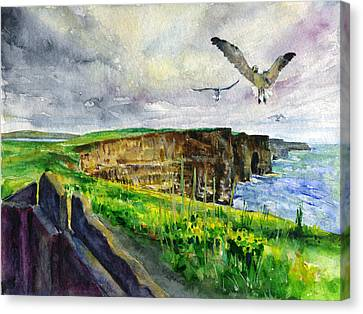 Seagulls At The Cliffs Of Moher Canvas Print by John D Benson