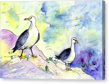 Seagulls In Calpe In Spain Canvas Print by Miki De Goodaboom