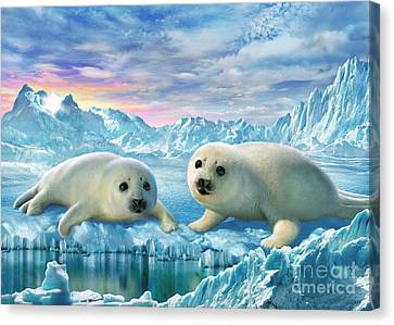 Seal Pups Canvas Print by Adrian Chesterman