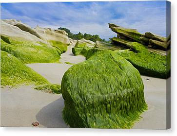 Seascape Canvas Print by Aged Pixel