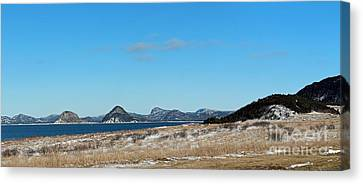 Seascape - Panorama Canvas Print by Barbara Griffin