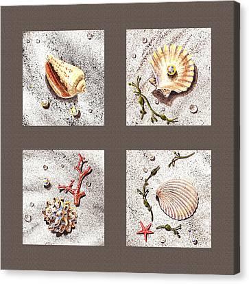 Seashell Collection IIi Canvas Print by Irina Sztukowski
