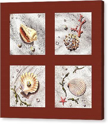 Seashell Collection Iv Canvas Print by Irina Sztukowski
