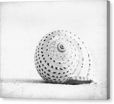 Seashell Voices Canvas Print by Carolyn Cochrane