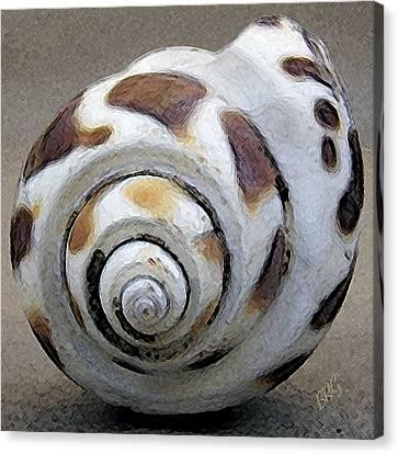 Seashells Spectacular No 2 Canvas Print by Ben and Raisa Gertsberg