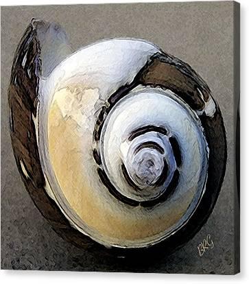 Seashells Spectacular No 3 Canvas Print by Ben and Raisa Gertsberg