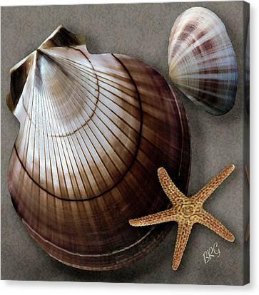 Seashells Spectacular No 38 Canvas Print by Ben and Raisa Gertsberg