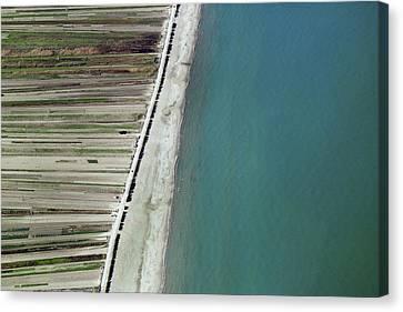 Seaside, Barletta Canvas Print by Blom ASA