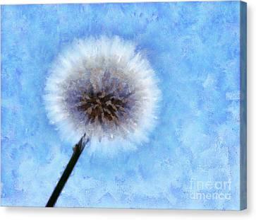 Secret Wish Canvas Print by Krissy Katsimbras