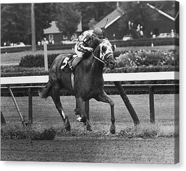 Secretariat Vintage Horse Racing #01 Canvas Print by Retro Images Archive