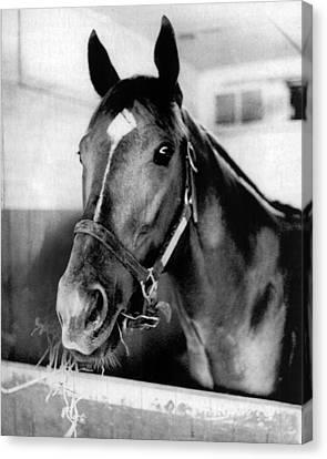 Secretariat Vintage Horse Racing #18 Canvas Print by Retro Images Archive
