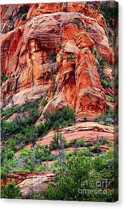 Sedona Perspective Canvas Print by Carol Groenen
