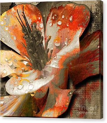 Seeds Canvas Print by Yanni Theodorou