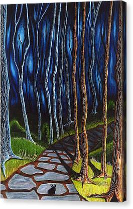 Seeking A Shadow  Canvas Print by Danielle R T Haney