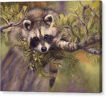 Seeking Mischief Canvas Print by Lucie Bilodeau