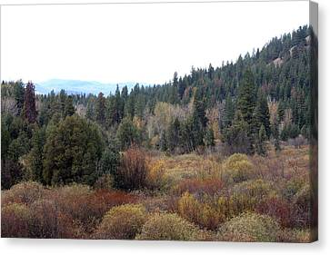 Seeley Lake Canvas Print by Larry Stolle