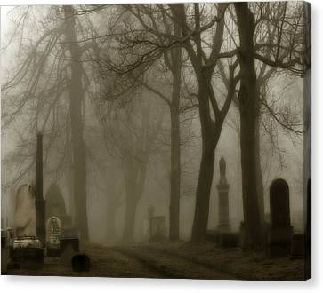 Seeped In Fog Canvas Print by Gothicolors Donna Snyder