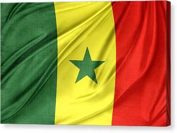 Senegal Flag Canvas Print by Les Cunliffe