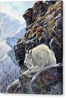 Sentinel Of The Canyon Canvas Print by Steve Spencer