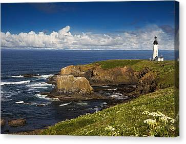 Sentinel On The Rocks Canvas Print by Andrew Soundarajan