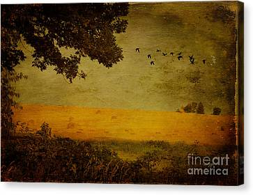 September Canvas Print by Lois Bryan