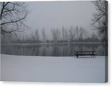 Serene  Canvas Print by Alicia Knust