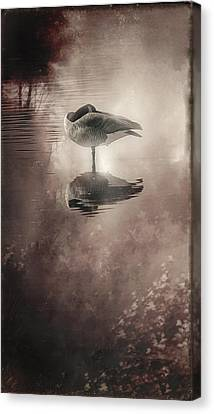 Serenity Canvas Print by Kelly Gibson