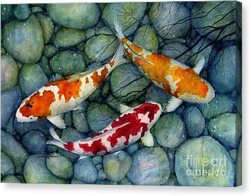 Serenity Koi Canvas Print by Hailey E Herrera