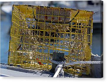Sesuit Harbor Lobster Cage Canvas Print by Juergen Roth