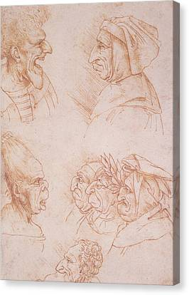 Seven Studies Of Grotesque Faces Canvas Print by Leonardo da Vinci