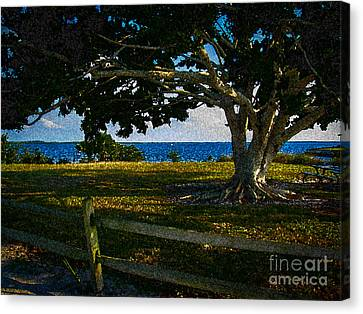 Shade Tree In The Park Canvas Print by Eric Geschwindner