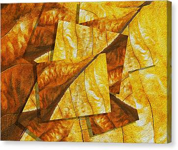 Shades Of Autumn Canvas Print by Jack Zulli
